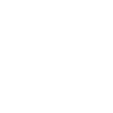 Noize Custom Logo